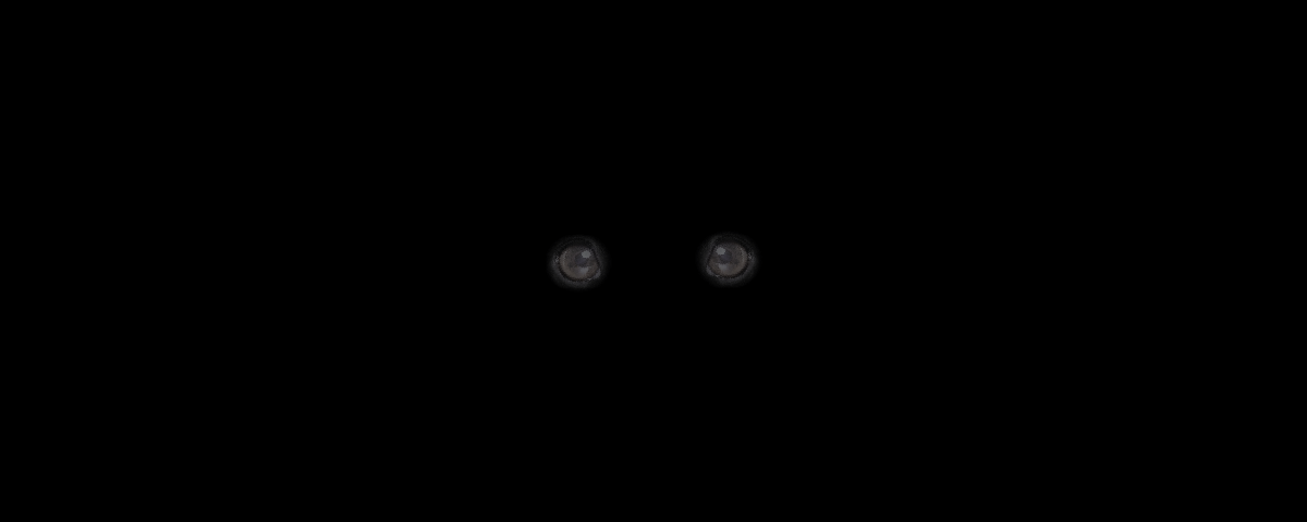 Image of a dog's eyes glowing in the dark during a power outage